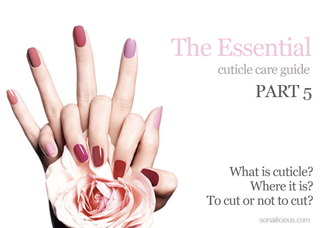 what is cuticle, cuticle care guide