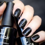 Jessica Black Beauties: Review