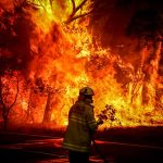 Australian Bushfires: The Inconvenient Facts You Need To Know