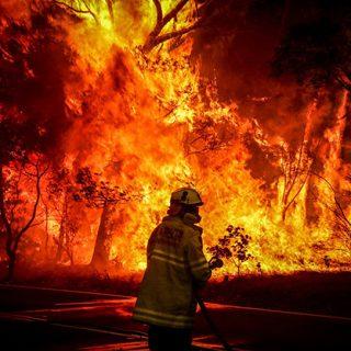 Australia bushfire catastrophe facts new south wales 2019 2020