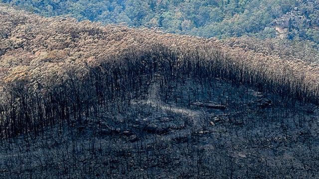area burnt in Australia bushfires 2020 2